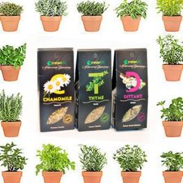 Herbs - Crete